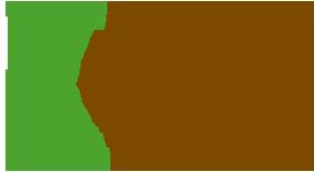 logo_cite_verte